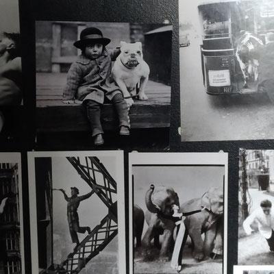 La collection de cartes postales vintage en noir et blanc apporte une note graphique sur le fond ardoise de la porte du placard.