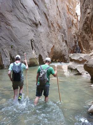 bei der Flusswanderung im Zion Nationalpark in den USA