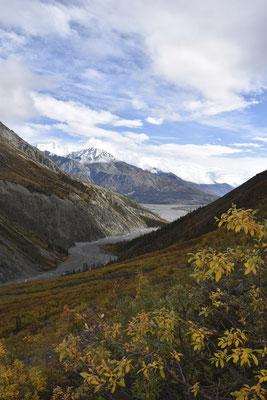 Der Blick zurück ins Tal des Canada Creek