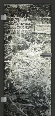 Ganzglastür mit Printmotiv Life 8 | Zarge CPL Anthrazitgrau, Designkante 60 mm | Schlosskasten Modern mit Türgriff Paros Edelstahl