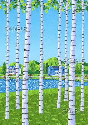 風景イラスト/白樺の木陰から