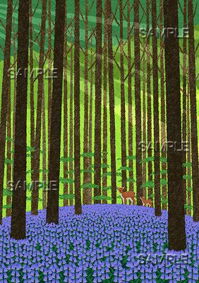 風景イラスト/ブルーベルズの森の朝