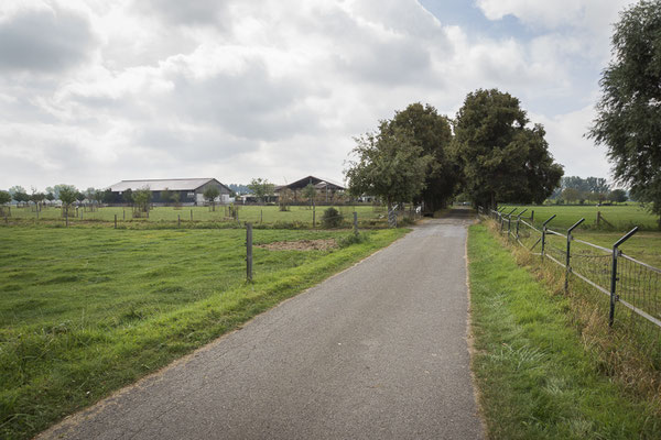 Lindenallee