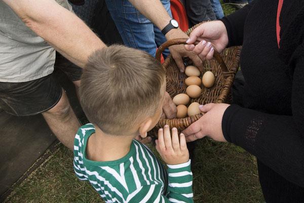 Eieren halen
