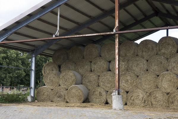 Al een paar balen hooi klaar voor de winter