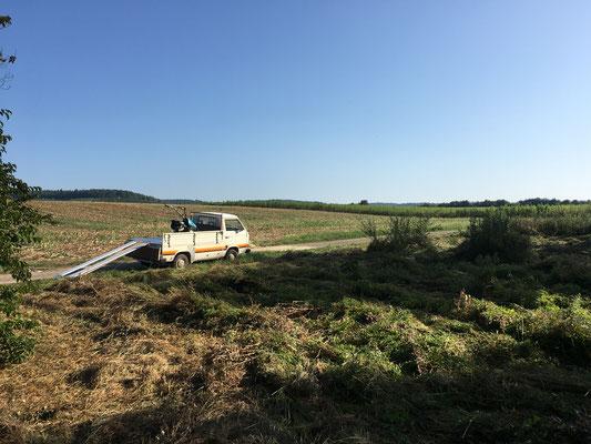 Mahd einer Feuchtwiese bei den Röhrachteihen im September 2020