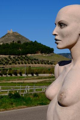 Las Plassas, nel medioevo il villaggio fece parte della curadorìa di Marmilla  nel Regno di Arborea