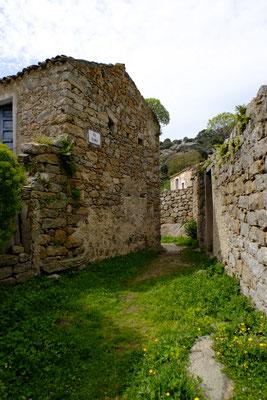 ©marcosodini.com