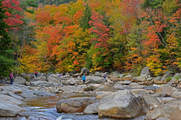 Indian Summer im White Mountain National Forest (New Hampshire)