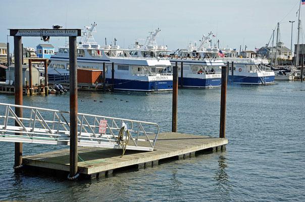 Ausflugsboote warten im Hafen auf Gäste.