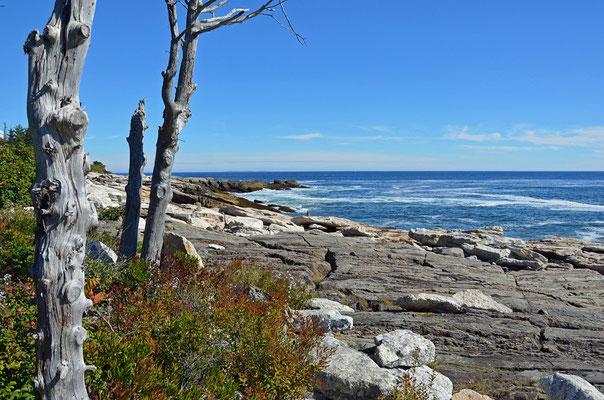 Küste bei Boothbay Harbor (Ocean Point Rd.), Maine
