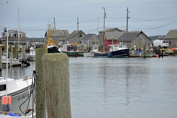 im Fischereihafen von Menemsha ist die Flotte von Martha´s Vineyard stationiert