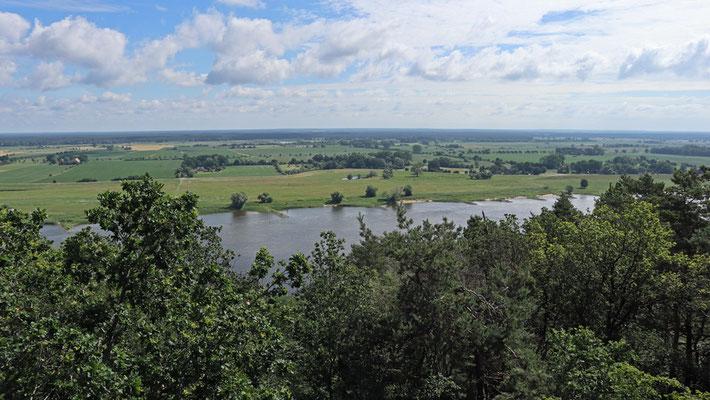 Blick vom Kniepenberg über die Elbe