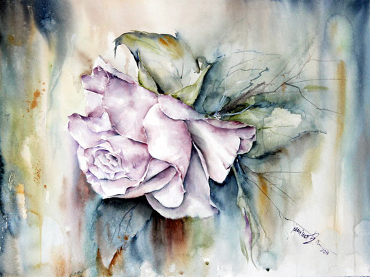 Fascination the shape of the rose-bloom / Aquarell 56x42cm