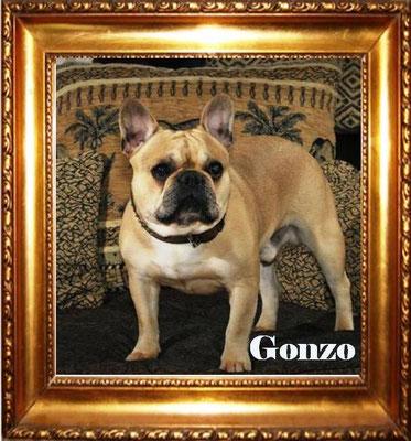 Abi`s Vater ist unser Gonzo