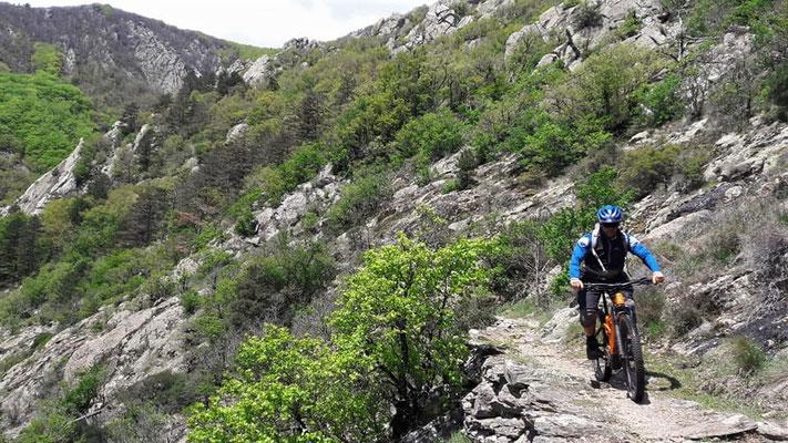 Enduro dans l'hérault -montagnes du Caroux
