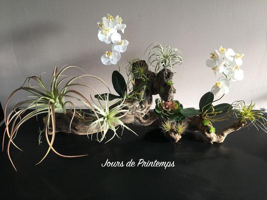 Orchidées et tillandsias artificiels haut de gamme