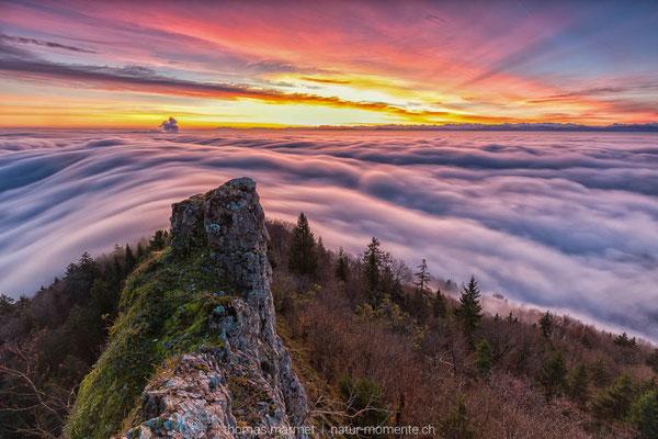 Nebelwelle Belchen