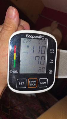 Bruno Blutdruck und Puls