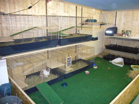 Kaninchenpension Anbau