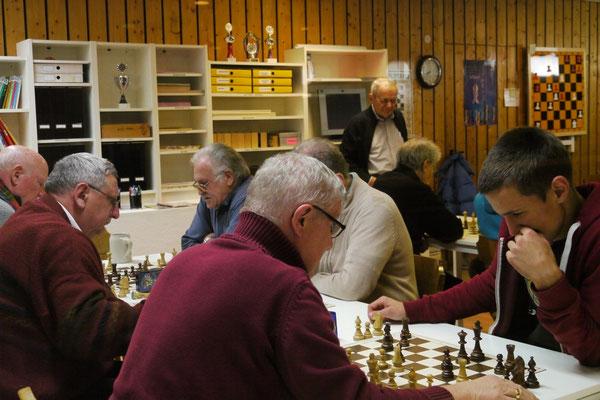 Steiner Stadtmeisterschaft 2014