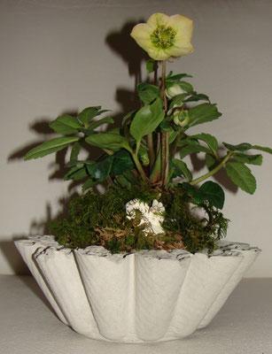Zement-Blumentopf