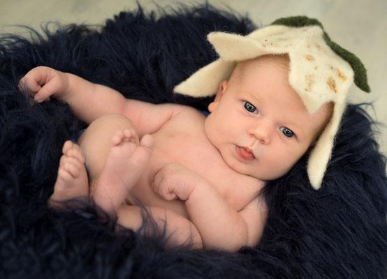 #neugeborenenshooting