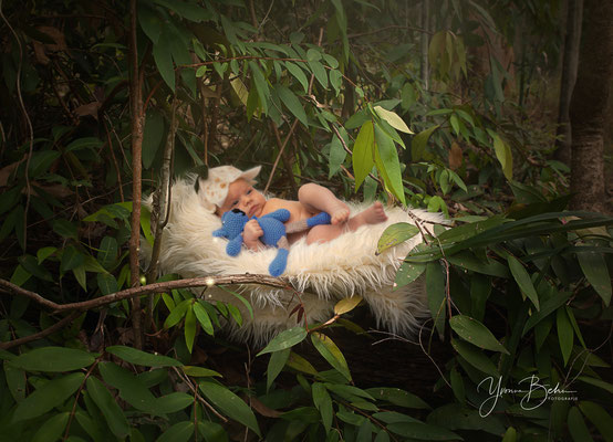 Newborn Wald