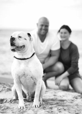 #fotoshootingmithund