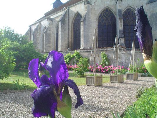 ©Sellen. Au printemps, dans le parc du gîte La Paliole.