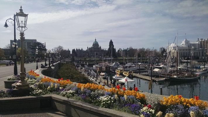 Die Hafengegend von Victoria