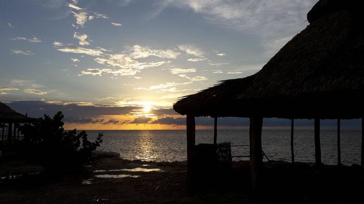 ...und zum Sunset frischen Fisch am Wasser :)