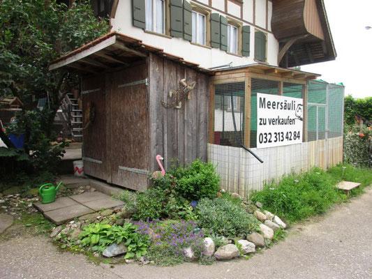 Unser Meerschweinchenhaus, bereits etwas in die Jahre gekommen, aber immer noch ideal
