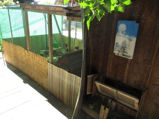 im Frühjahr 2016 entstand der Anbau zum Meerschweinchenhaus. Vorher waren es zwei Gehege, die nicht begehbar waren