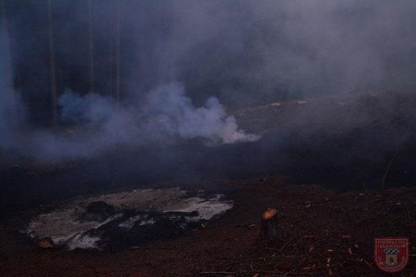 Die Fläche, die vom Feuer betroffen war, betrug ca. 150 m²