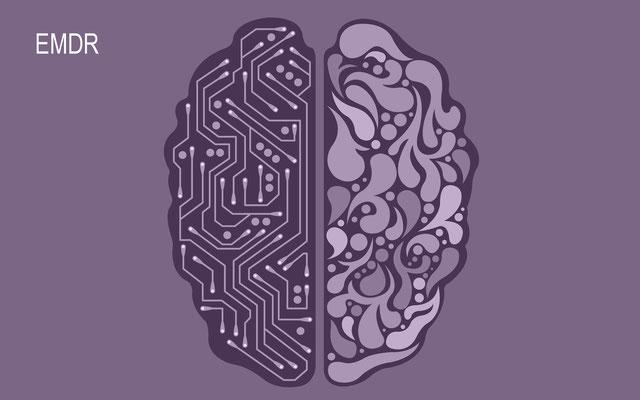 EMDR-Traumatherapie / Neuroplastizität eine weitreichende Erkenntinis