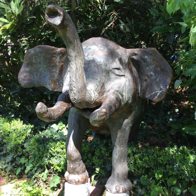 Elefant von Birgit Braun