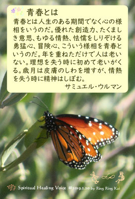 【∞ 第220回隣々会】Spiritual Healing Voice ♪