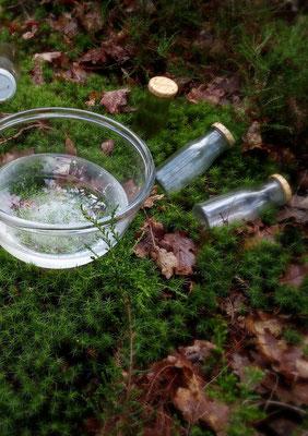 Eau de Source fraiche ; petites bouteilles de verre pour récolter les échantillons
