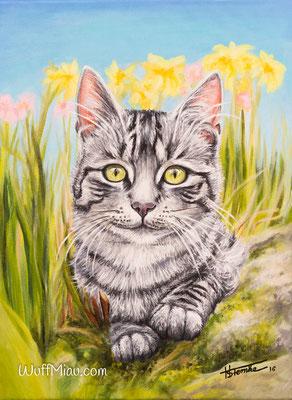 """Katze """"Bella"""", Acryl auf Leinwand, 40x30, 2016, Katzenmalerei von Hanna Stemke, WuffMiau"""