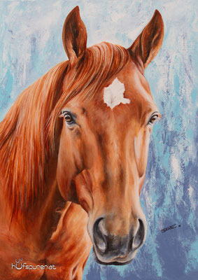 """Quarter Horse """"Tiffy"""", Acryl auf Leinwand, 70x50, 2016, Pferdemalerei von Hanna Stemke, www.hufspuren.com"""