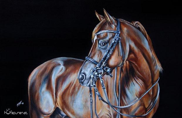 "Araber ""Bolero Ibn El Sueno"", Acryl auf Leinwand, 90x60, 2015, Pferdemalerei von Hanna Stemke, www.hufspuren.com"
