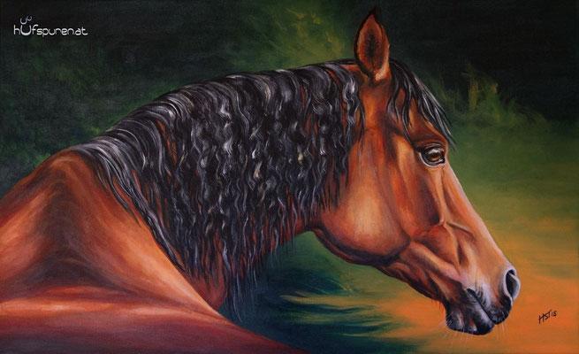 """Araber """"Esperado"""", Acryl auf Leinwand, 68x42, 2015, Pferdemalerei von Hanna Stemke, www.hufspuren.com"""