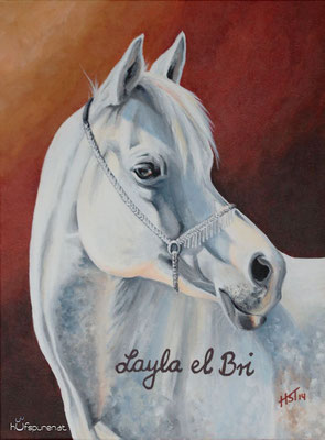 """Layla el Bri"", Acrylic on Canvas, 40x30, 2014"