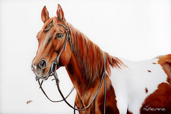 "Paint Horse ""SR Boomers Catweazle"", Acryl auf Leinwand, 120x80, 2015, Pferdemalerei von Hanna Stemke, www.hufspuren.com"