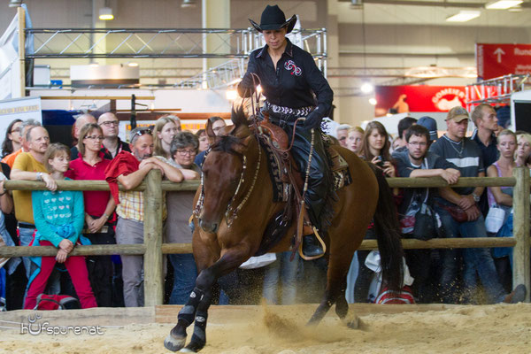 Dream on Revolution, Quarter Horse Stallion Promotion Americana 2015, Decksprungversteigerung