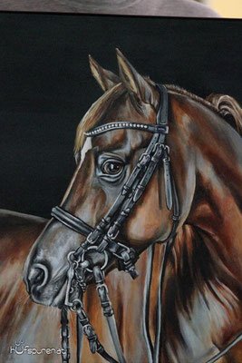 "Pferdegemälde, Acryl auf Leinwand, ""Araberhengst und Dressurpferd ""Bolero Ibn El Sueno"", Pferdemalerei, www.hufspuren.com"