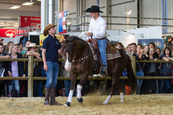 Spat Split and White, Quarter Horse Stallion Promotion Americana 2015, Decksprungversteigerung
