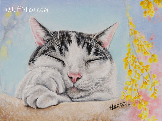 "Kater ""Alf"", Acryl auf Leinwand, 40x30, 2016, Katzenmalerei von Hanna Stemke, WuffMiau"