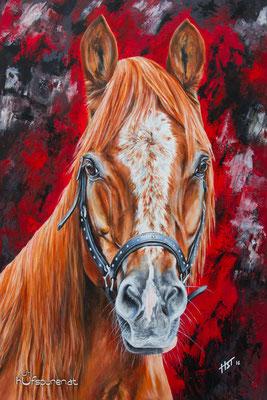 "Pony Araber Mix ""Prinz"", Acryl auf Leinwand, 90x60, 2016, Pferdemalerei von Hanna Stemke, www.hufspuren.com"
